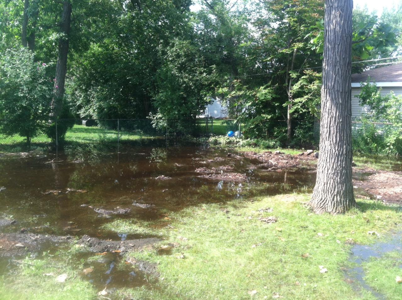 Rear yard standing water